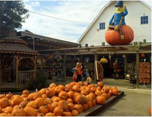 Fall on the Farm Event