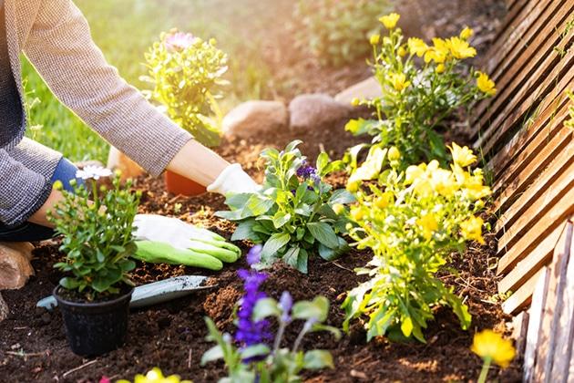 Bon Top 4 Tips To Get Your Garden Ready